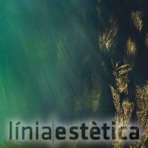 tratamiento-con-algas-linia-estetica-lleida